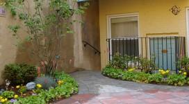 StCAS-Garden